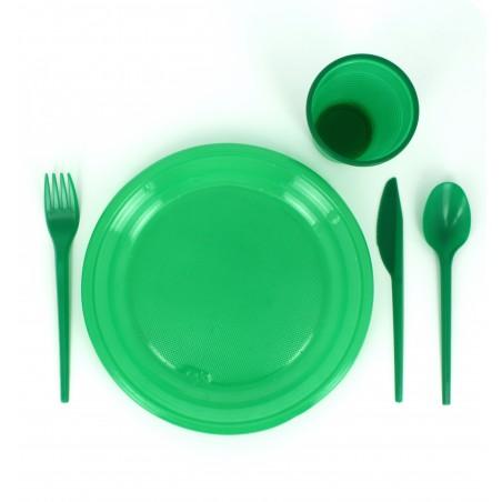 Cuillère Plastique Verte de 165mm (15 Unités)