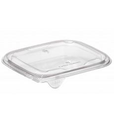 Couvercle Plat pour Saladier Plastique PET 12x12cm (50 Utés)
