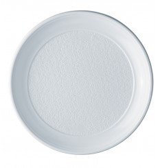 Assiette Plastique Plate Blanche PS 250 mm (100 Unités)