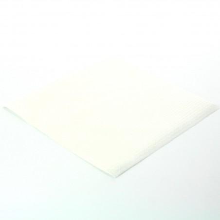 Serviette en Papier 30x30 2 épaisseurs (4.800 Unités)