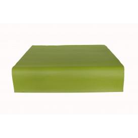Nappe en papier 1x1 Mètre Pistache 40g (400 Unités)