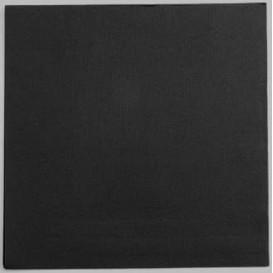 Papieren servet zwart 25x25cm 2C (100 stuks)