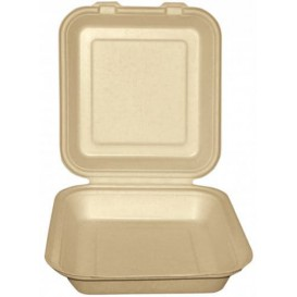 Boîte Bio en Canne à Sucre Naturel 20x20x7,5cm (50 Utés)
