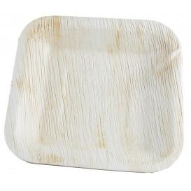 Assiette carrée en Feuilles de Palmier 20x20cm (25 Unités)