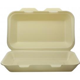 Boîte en FOAM LunchBox Champagne 240x155x70mm (125 Utés)