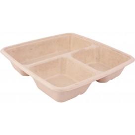 Boîte Canne à Sucre 3C 900ml 230x230x40mm (75 Utés)