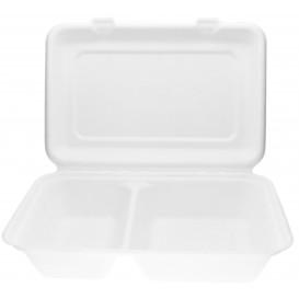 Boîte à Hamburger 2C Canne à Sucre 320x240x50mm (50 Unités)