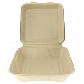 """Suikerriet Gescharnierd Container """"Menu Box"""" 23,5x23,5x7,8cm (50 stuks)"""
