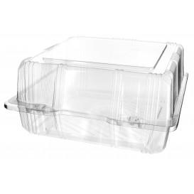 Plastic scharnierende bakkerij Container PET 20x20x10cm (220 stuks)