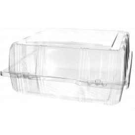 Plastic scharnierende bakkerij Container PET 22x22x10cm (220 stuks)