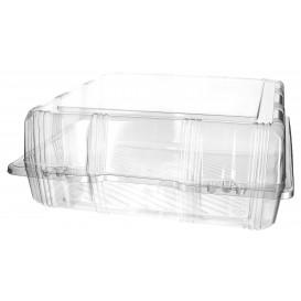 Plastic scharnierende bakkerij Container PET 25x25x10cm (220 stuks)