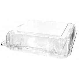 Plastic scharnierende bakkerij Container PET 20x20x6cm (20 stuks)