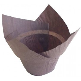"Cupcake vorm voering tulpvorm ""Step"" bruin Ø5x6,5/8,5cm (190 stuks)"