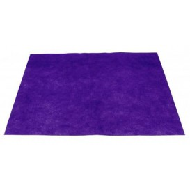 Set de Table en PP Non-Tissé Lilas 35x50cm 50g (500 Utés)