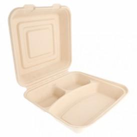 Boîte en Canne à Sucre Naturel 3C 250x250x75mm (50 Utés)