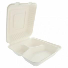 Boîte en Canne à Sucre Blanc 3C 20x20x7,5cm (50 Utés)