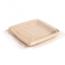 Couvercle Plastique PP pour Boîte 23x23cm (25 Utés)