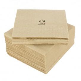 Papieren servet Eco-Vriendelijk 20x20cm 2C (100 stuks)