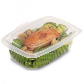 Plastic Container Microwave PP transparant 600ml 18,5x13,5cm (50 stuks)