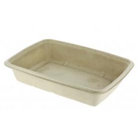 Boîte Canne à Sucre PLA 950ml 23x16,5x5cm (300 Utés)