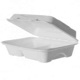 Emballage Canne à Sucre Blanche 2C 23x15x7,5cm (50 Utés)
