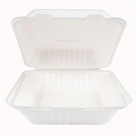 Emballage Canne à Sucre avec PLA Blanche 20x20x7,5cm (50 Utés)