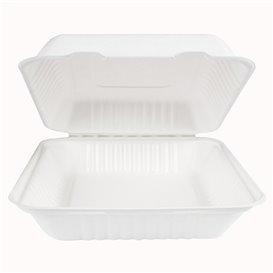 Emballage Canne à Sucre avec PLA Blanche 23x23x7,5cm (200 Utés)