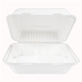 Suikerriet Gescharnierd Container + PLA wit 3C 23x23x7,5cm (200 stuks)