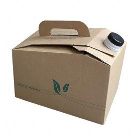 Thermos Jetable en Carton 2.800 ml (10 Unités)