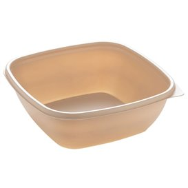 Barquette Plastique PP Crème 750ml 16,5x16,5x6cm (300 Utés)